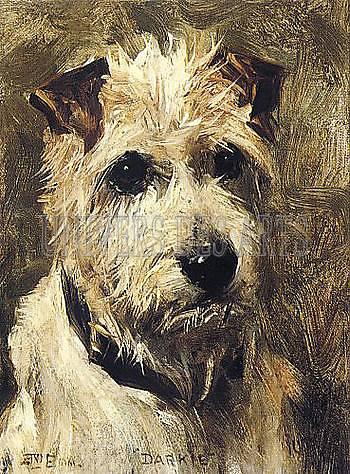 emms_john_portrait_d_un_terrier_1903.jpg