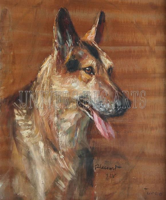 lecourt_raimond_portrait_du_chien_turco.jpg