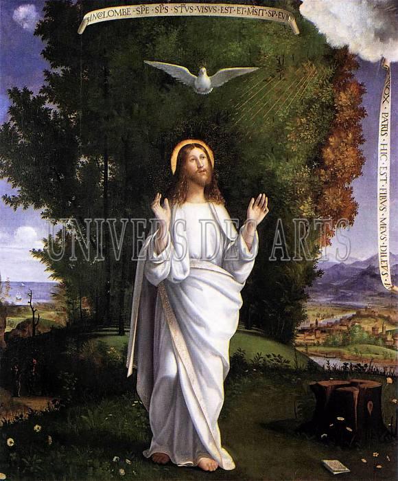 previtali_andrea_transfiguration.jpg