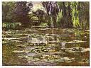 monet_claude_les_nympheas_paysage_d_eau_1905.jpg