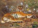 Tigre de l'Annam